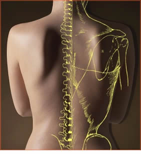 Osteopathy-applied-kinesiology-and-physiotherapy